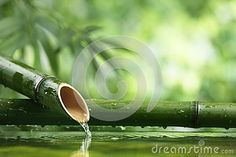 Natural  Bamboo Fountain - Download From Over 32 Million High Quality Stock Photos, Images, Vectors. Sign up for FREE today. Image: 32085667