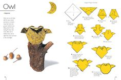 Heres a how to Make Origami
