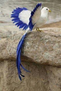 Blue and white bird – Animal Planet All Birds, Cute Birds, Pretty Birds, Little Birds, Beautiful Birds, Animals Beautiful, Angry Birds, Exotic Birds, Colorful Birds