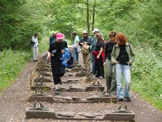 #Walking is one of the most popular outdoor activities in the #DeanWye. Find out more here: