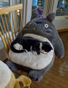 Tuxie and totoro..i dont know which board i have to pin this one..