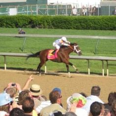 Plan Ahead to Get to The Kentucky Derby {Kentucky}