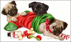 Pug - Christmas Toys -  by Margaret Sweeney