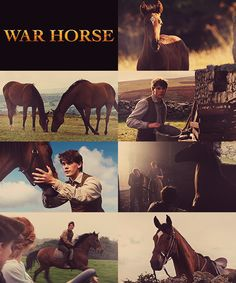 War Horse. One of the most beautifully tragic movies I have ever seen. It made me bawl like a baby!