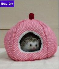 Cheap kennel, Buy Quality kennel leashes directly from China kennel products Suppliers: Strawberry Warm Nest Mini Pet Hamster Cotton House African Hedgehog House Kennel Small Animal Hamster Pet Kennel Lucky B