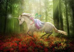 Unicorn and Fairy :)