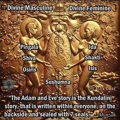 "37 mentions J'aime, 5 commentaires - Mynzah (@mynzah) sur Instagram: ""#kundalini #adamandeve #ida #pingala #shiva #shakti #osiris #isis #sushumna #chakras #art #alexgrey…"""