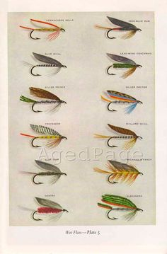 Vintage Print, Trout Fishing Flies, Art Illustration, Wall Decor, Double Sided, Wet Flies, Plates 5 & 6.