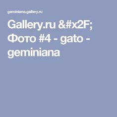 Gallery.ru / Фото #4 - gato - geminiana