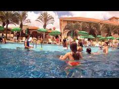 Royal Palm Plaza Fizemos uma pesquisa dos pacotes para o carnaval nos melhores resorts e hotéis fazenda do Brasil. Assim você não precisa entrar no site e ligar para um por um! São 40 opções em todo o Brasil!