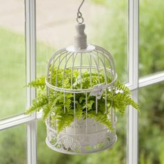 Decorative Fern Birdcage