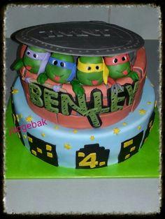 Turtle cake  Teenage mutant ninja turtles Tmnt