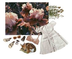 """""""Meadow 🌞"""" by xeptum ❤ liked on Polyvore featuring art"""