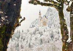 Kinda reminds me of Narnia... Neuschwanstein Castle, Bavaria, Germany
