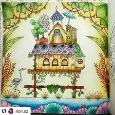 by  @nori.sz ・・・  #nórialkot #johannabasford #magicaljungle #coloringbook