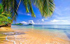 Impresionantes paisajes tropicales