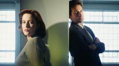 the x files picture free (Coleman Birds 1920x1080)