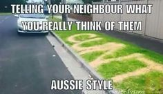 Top 24 Australian Memes - Quotes and Humor