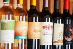 Wine Tasting Tours in Marsala, Sicily at Donnafugata Cellars