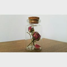 Dry flowers  Rose and limonium
