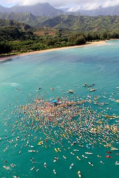 paddle boarding in Hawaii! it looks so amazing but really crowded right there, lol! Foto Sport, Sup Stand Up Paddle, Hanalei Bay, Foto Poster, Ocean Party, Sup Yoga, Sup Surf, Hawaiian Islands, Paddle Boarding