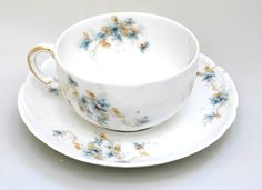 Hey, I found this really awesome Etsy listing at https://www.etsy.com/listing/251137635/tea-cup-limoges-of-france-haviland-blue