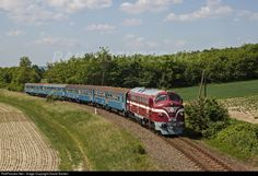 RailPictures.Net Photo: M61 010 Hungarian State Railways (MÁV) GM-EMD/Nohab Class M61 at Bakonyszentlászló, Hungary by David Sandor Train Truck, Cartoon Fan, Train Engines, Train Journey, Locomotive, Hungary, Diesel, Trucks, In This Moment