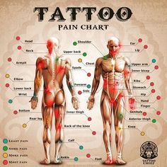 "I rather feel pain than nothing at all !!!! :) [ ""Wondering how much that next tattoo will hurt? A tattoo enthusiast website has developed a pain-o-meter and pain chart to help the soon-to-be-tattooed gauge how much pain they are in for. As expected, tattoos on the head and face won"