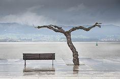 Paseo Pereda con lluvia