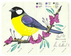"""""""Birds of Europe: Great Tit"""" by Fran Giffard. Watercolour on Paper, Subject: Animals and birds, Graphic, illustrative and typographic style, One of a kind artwork, Signed on the front, Size: 18 x 14 x 0.1 cm (unframed), 7.09 x 5.51 x 0.04 in (unframed), Materials: watercolour, ink, gouache, pencil, moleskine, paper"""