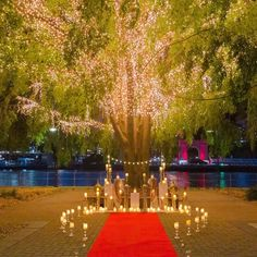 Proposal under a tree | Romantic setup | Candles and fairylights | Photographer: unknown | Source: theproposalguru | #proposal #willyoumarryme #proposalideas #weddingproposal #engaged #indianwedding #bridetobe #propose #romantic #diy #redcarpet #fairylights #datenight #dateideas #anniversary #candlelight #gettingmarried #marriageproposals #wittyvows Wedding Proposals, Marriage Proposals, Romantic Proposal, Maybe One Day, Fairy Lights, Vows, Getting Married, Love Story, Fairy Tales