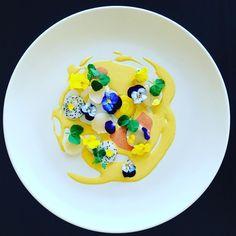 Scallops CeViche • Physalis • Tamarillo • Aji amarillo • Pitaya • #cheflife…