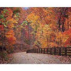 Road Trip... East Coast in the Fall