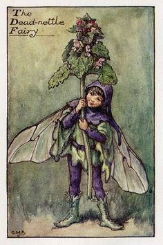 Lamier fée fleur Vintage d'impression, c.1927 Cicely Mary Barker livre plaque Illustration