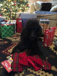 Charlie's Christmas