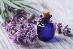 6 aceites esenciales que ayudan en el tratamiento del asma - Mejor con Salud | mejorconsalud.com