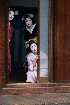 oiran-geisha: The maiko Eriha, Katsue and Shouko at a door. Each of these girls are from some of the richest okiya of Gion Kobu. Tama okiya for Eriha, Odamoto okiya for Katsue and Nishimura okiya for Shouko. (Source)