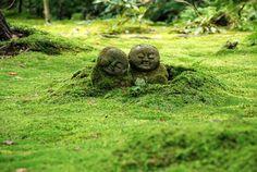 Moss Covered Jizō Buddha Statues @ Sanzen-in Temple and Moss Garden Ohara Japan