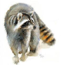 Raccoon watercolor - Giclee Print - Home Wall Decor - Raccoon Watercolor Illustration - Woodland animals Watercolor Animals, Watercolor Print, Watercolor Illustration, Watercolor Paintings, Raccoon Drawing, Raccoon Art, Baby Raccoon, Fox Painting, Fox Print