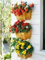 Cestinhos de vime na parede servem de floreira.