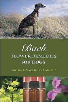 BACH FLOWER REMEDIES FOR DOGS Paperback Book by Martin J Scott & Gael Mariani