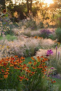 Gardens : Gardening : © Jaap de Vries - Jacobstuin