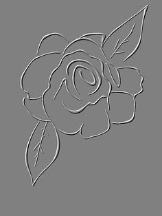 Embossed Rose sketch by Sue Cox