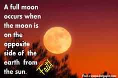Moon Facts - Unbelievable Facts about the Moon - Did you know that when a full moon occurs the moon is on the opposite side of the earth from the sun. It's face is then fully illuminated by the sun. - Fact-o-Rama Moon Facts, Craters On The Moon, Walk The Moon, Last Man, Unbelievable Facts, Anything Is Possible, Full Moon, One Pic, Did You Know