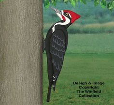 3D Giant Pileated Woodpecker Pattern These are fun to make.