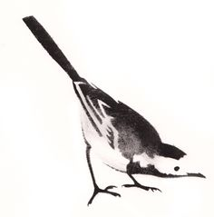 Pied wagtail stencil art Lucy Williams http://www.totallylucid.com/