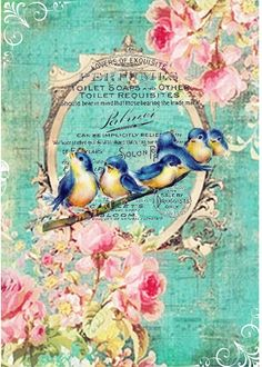 Little birds & roses