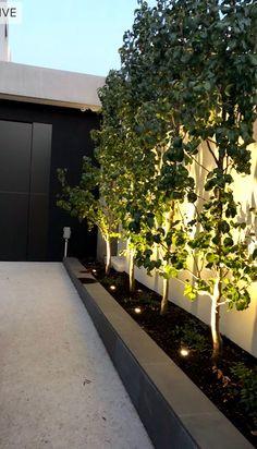 10 Best Garden uplights images