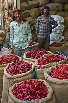 Red chillies sellers at Khari Baoli spice and dried foods bazar, Old Delhi, India
