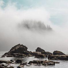 wild coast #stayandwander by codeu